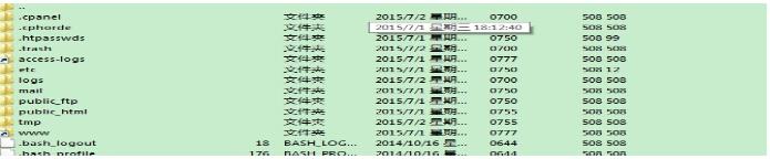 最后尝试连接FTP成功列出目录: